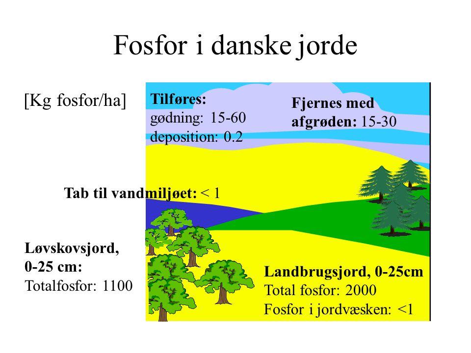Fosfor i danske jorde [Kg fosfor/ha] Tilføres: Fjernes med